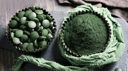 Does Spirulina protect from coronavirus? Benefits of Covid-19 treatment