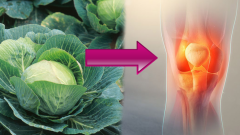Causes bone and joint pain? What is good for joint and bone pain?