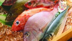 Effects of fish on immunity! What are the benefits of fish? How to consume the healthiest fish?