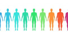 How is the body mass index calculated?