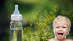 How much should fennel tea be given to babies? What are the benefits? If you drink fennel to colic baby. . .