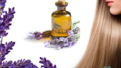 What Are the Benefits of Lavender Oil to Hair? How is it applied?