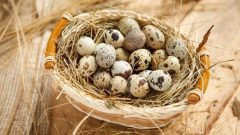 What are the benefits of quail eggs preventing kidney stones!