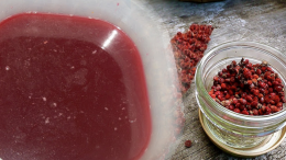 What are the benefits of sumac juice? What does Sumac gargle do? How to make sumac tea?
