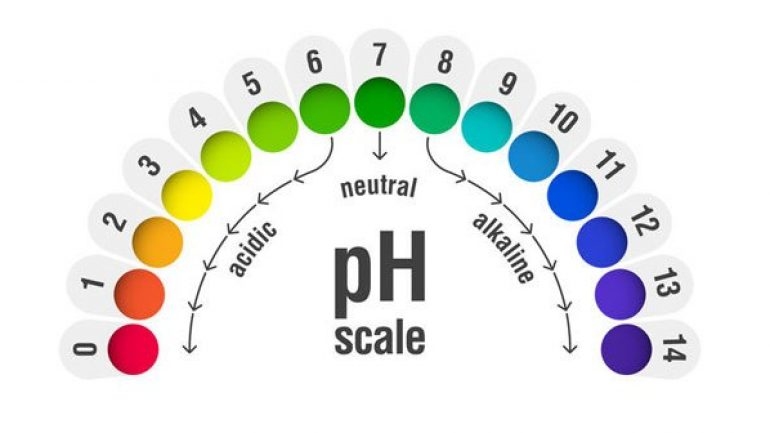 What does pH mean, skin urine pH value should be ideal?